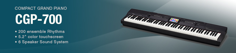 PX-300 - Electronic Musical Instruments